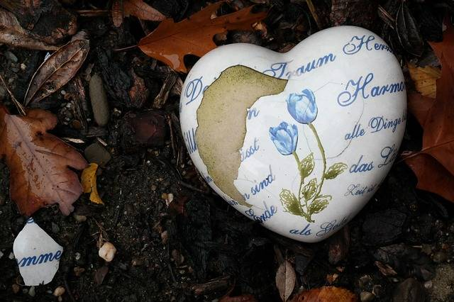 Heart Bare Dream - Free photo on Pixabay (358565)
