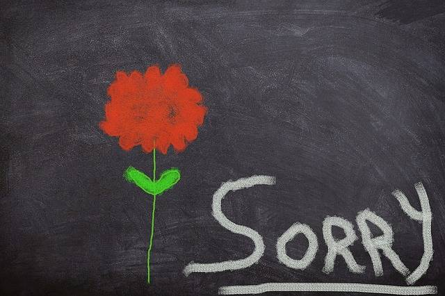 Board Flower Excuse Me - Free image on Pixabay (358776)