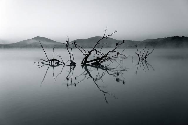 Nature Reserve Africa Lake - Free photo on Pixabay (373358)