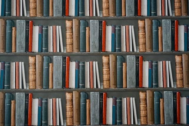 Books Bookshelf Library - Free photo on Pixabay (373833)