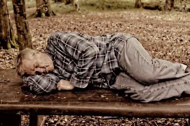 Man Person Sleep Park - Free photo on Pixabay (373839)
