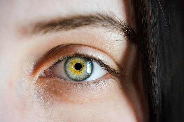Eye Iris Macro - Free photo on Pixabay (377977)