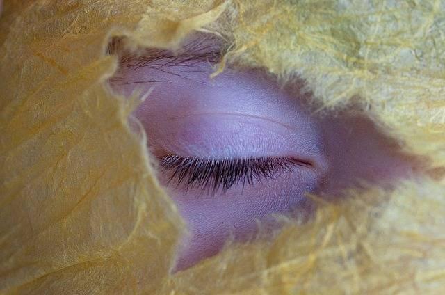 Eye Lid Eyelashes - Free photo on Pixabay (378423)
