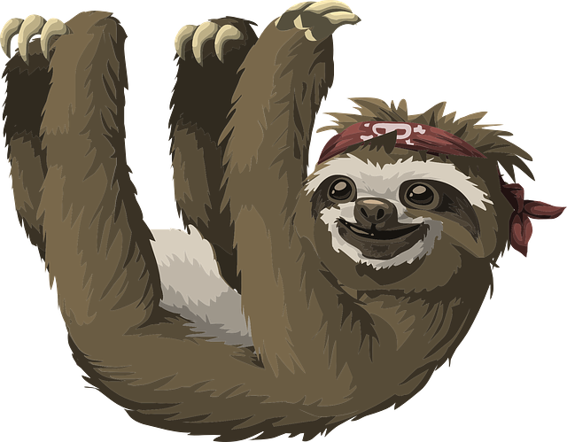 Sloth Animal Mammal - Free vector graphic on Pixabay (378960)