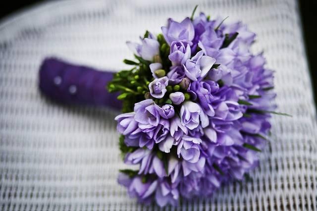 Marriage Flower Purple Flowers - Free photo on Pixabay (394471)