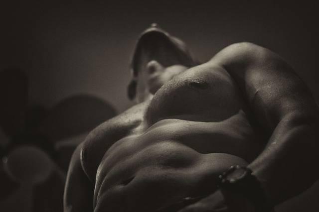 Naked Upper Body Fit - Free photo on Pixabay (394810)