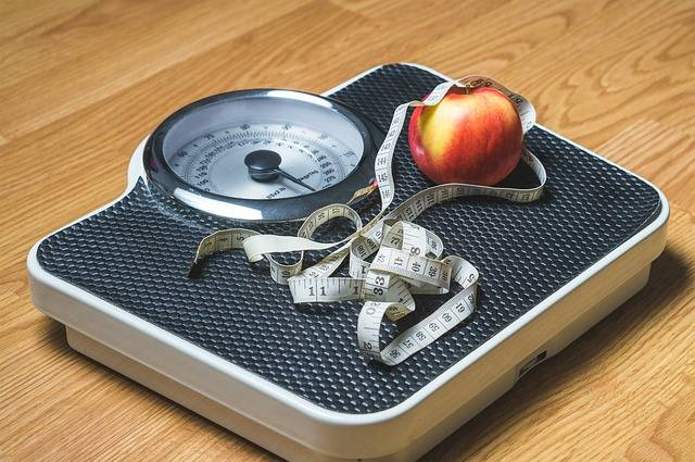 Weight Loss Nutrition - Free image on Pixabay (395409)