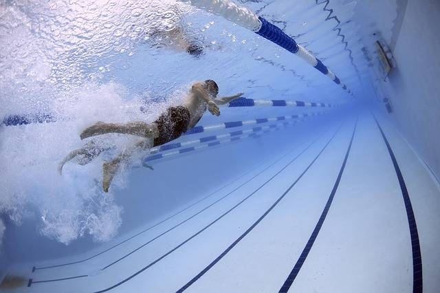 Swimmers Swimming Race - Free photo on Pixabay (407306)