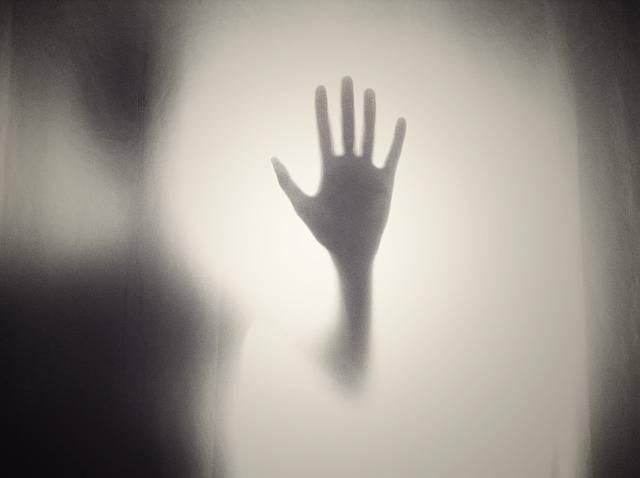 Hand Silhouette Shape - Free photo on Pixabay (445607)