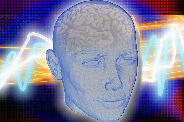 Head Brain Radiology - Free image on Pixabay (475774)