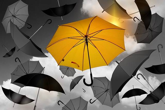 Umbrella Yellow Black - Free photo on Pixabay (476877)