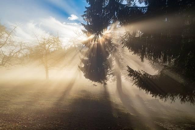 Rays Sun Light - Free photo on Pixabay (476881)
