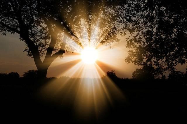 Sun Dawn Nature - Free photo on Pixabay (510787)