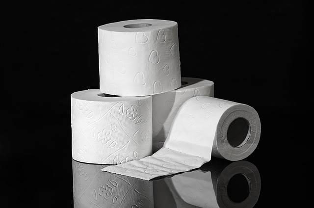 Toilet Paper Hygiene Role - Free photo on Pixabay (532587)