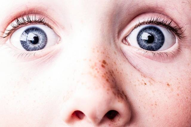 Surprised Blue Eyes Freckles - Free photo on Pixabay (565269)