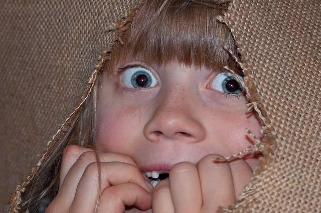 Person Human Girl - Free photo on Pixabay (565276)