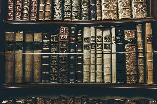 Books Library Reading - Free photo on Pixabay (565278)