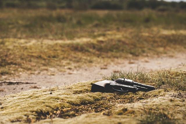 Gun Revolver Pistol - Free photo on Pixabay (601123)