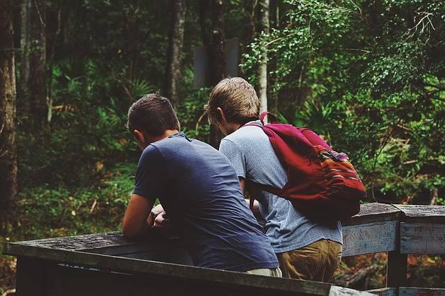 Friendship Nature Landscape - Free photo on Pixabay (601480)