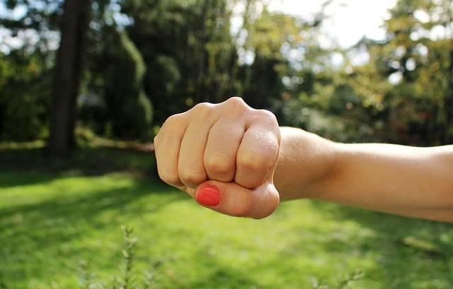 Fist Bump Anger Hand - Free photo on Pixabay (611983)