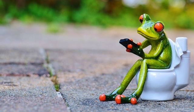 Frog Mobile Phone Toilet - Free photo on Pixabay (721932)