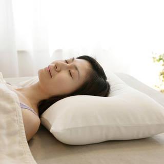 王様の夢枕   【公式】王様の夢枕と王様の抱き枕の専門店キング枕.com (741548)