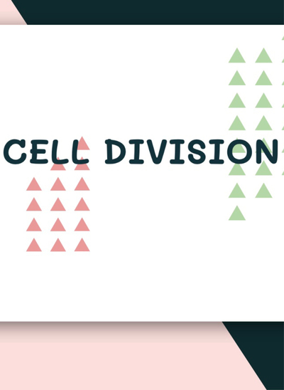 CELL DIVISION ปก