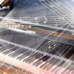 漫画【ピアノの森】を安くお得に購入する方法!ネタバレ感想も紹介