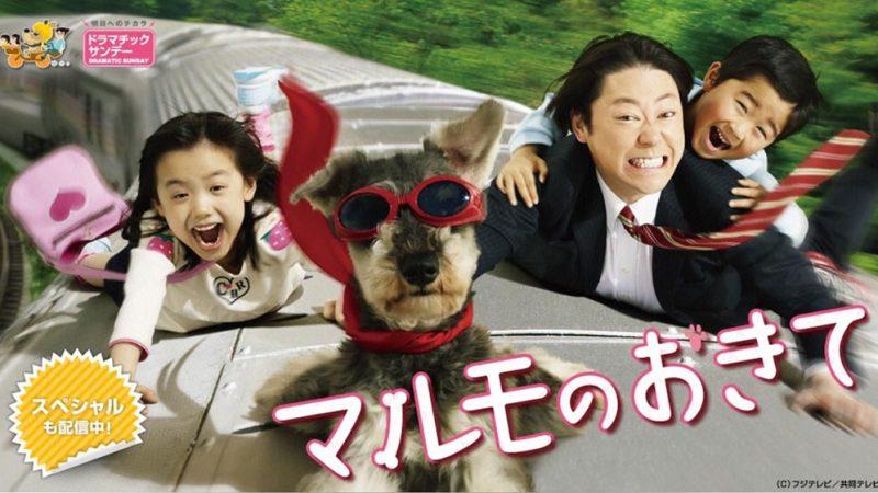 マルモのおきて 第8話の動画配信とあらすじ・ネタバレ感想!マルモ失恋!?