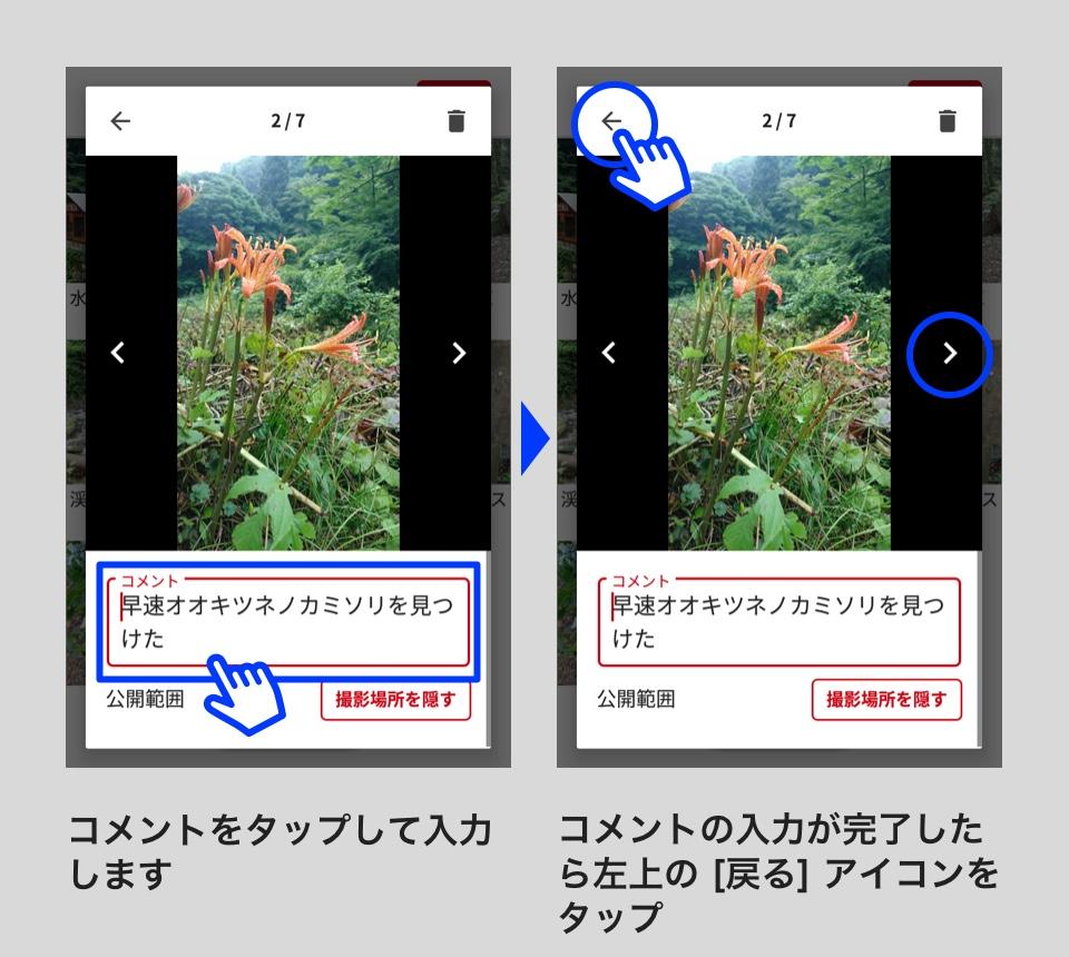 53_08.jpg