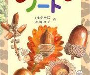 【絵本×あそび】どんぐりぞろえゲーム〜絵本/どんぐりノート〜