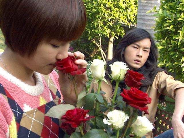薔薇之恋~薔薇のために~