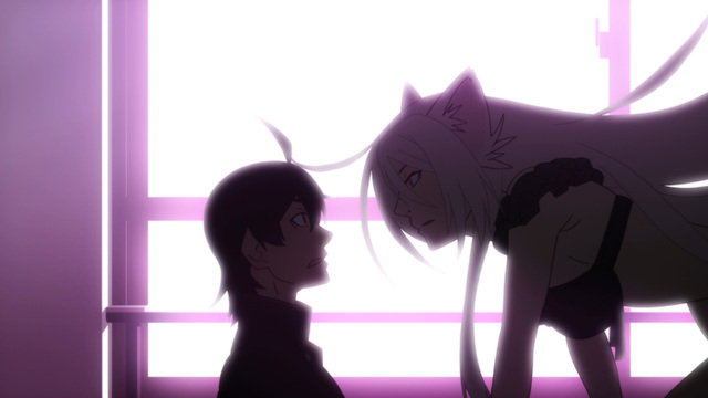 猫物語(黒)