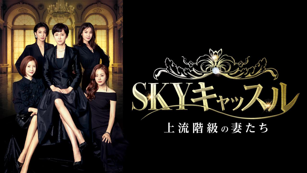 SKYキャッスル~上流階級の妻たち~【panelパネル】