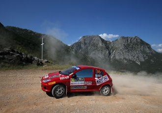 WRCでの活躍と愛らしいルックスで人気のフランス車!プジョー206ってどんなクルマ?