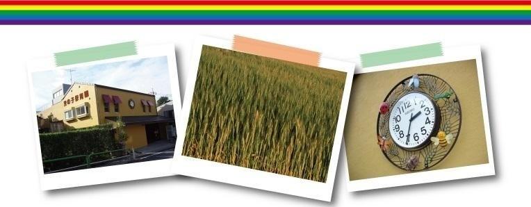 麦の子保育園