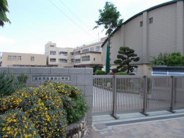 茨木市立春日小学校