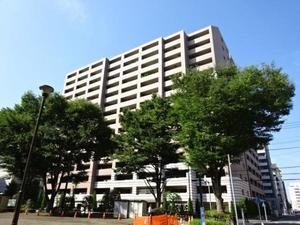アデニウム新横浜