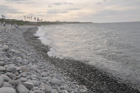 鳴り石の浜プロジェクト