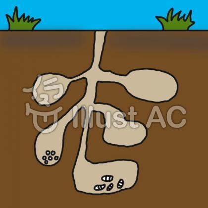 なんとなく 蟻の巣イラスト/イラストACはイラストが無料!商用利用もOK!ブログにこのイラストを貼る