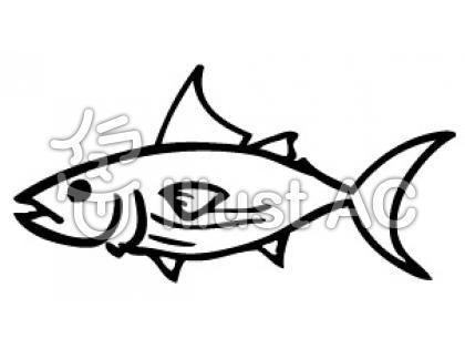 カツオイラスト/無料イラスト ... : 魚 ぬりえ 無料 : 無料