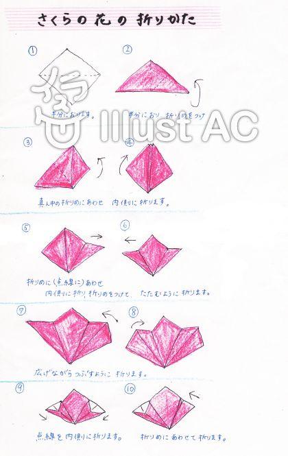 折り 折り紙 折り紙 星の折り方 : divulgando.net