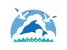 イルカと海鳥