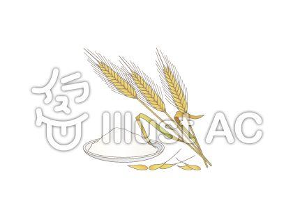 食品アレルギー表示義務品_小麦