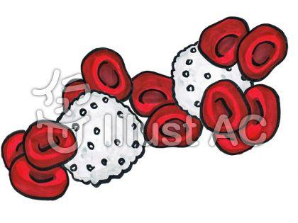 赤血球と白血球