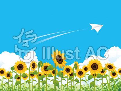 夏の爽やかひまわり畑(向日葵)背景02