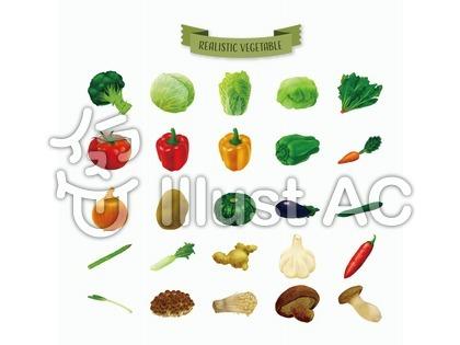 リアルな野菜のイラスト
