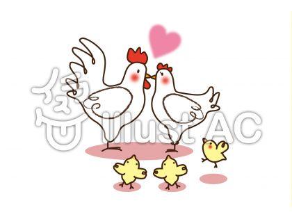 chicken_鶏の家族5