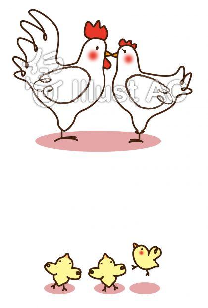 chicken_鶏の家族6
