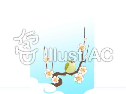 梅にウグイス2